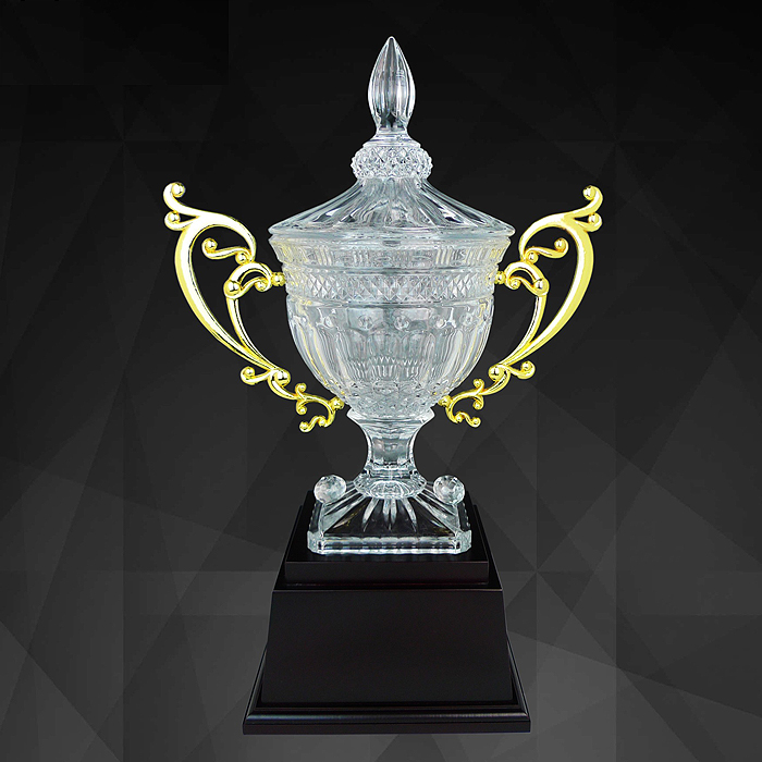 9142 - Exclusive Crystal Trophy