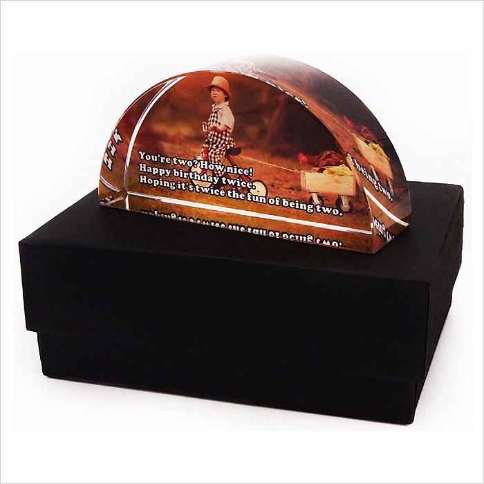 8209 - Crystal Paper Weight