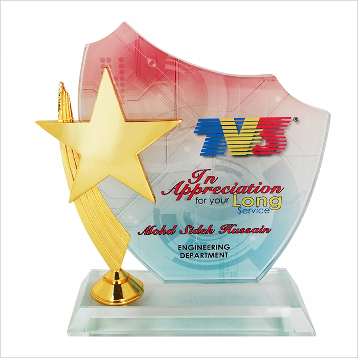 3032 - Exclusive Crystal Star Plaque