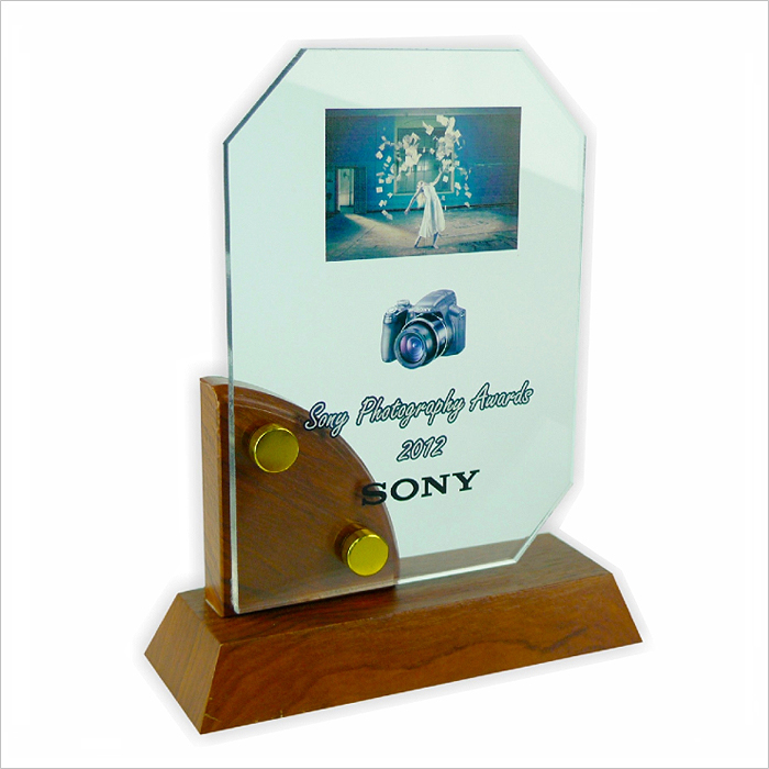 3008 - Exclusive Wooden Crystal Plaque